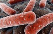 Симптомы и причины туберкулёза. Методы лечения заболевания