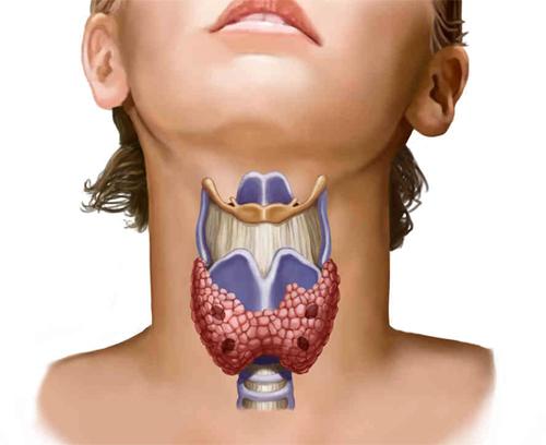 Что представляет собой эндокринная хирургия?