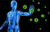 Иммунная система человека