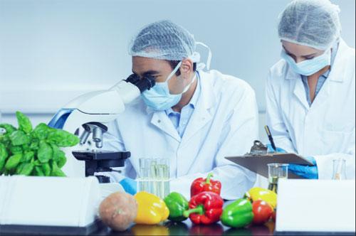 Пищевая промышленность и технические условия, связанные с ней