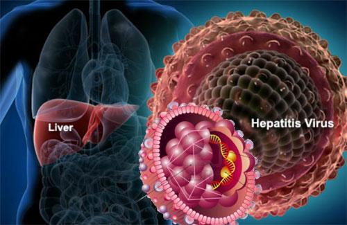 Новейшие методы борьбы с гепатитом С