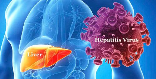 Гепатит: виды и пути заражения