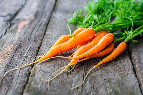 Значение моркови в рационе
