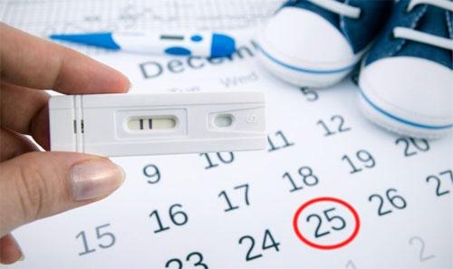 Онлайн-калькулятор для определения даты овуляции