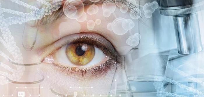 Офтальмологический ультразвуковой сканер Sonomed PacScan 300 Plus