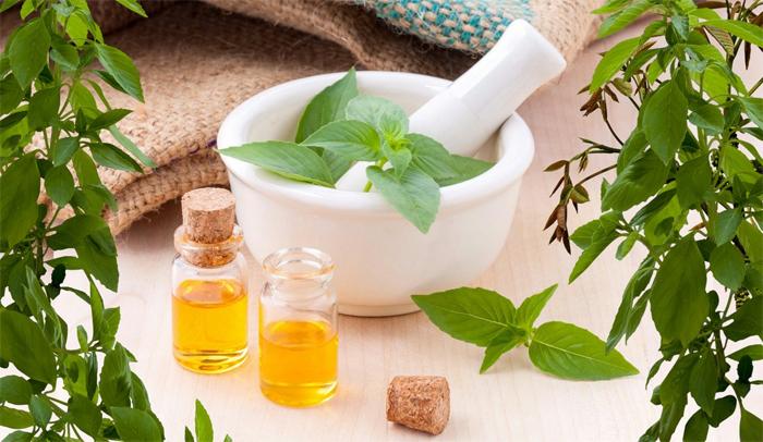 Дары природы для здорового человека