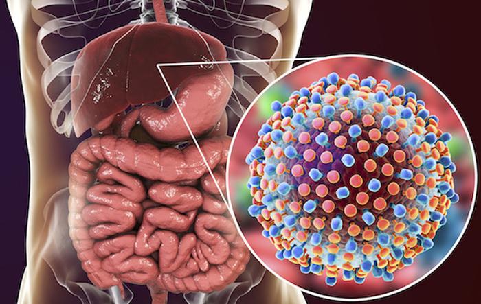 Насколько эффективно лечение гепатита C дженериками