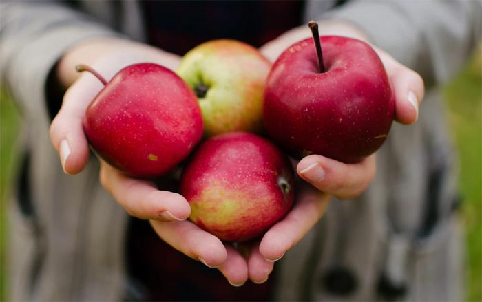 Можно ли яблоки при сахарном диабете