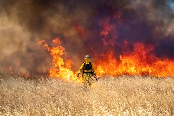 Как риск возникновения рака связан с загрязнением экологии дымом
